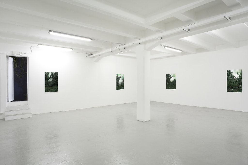 The Blank interiors serie, Galleria The Flat,di Massimo Carasi,  2016