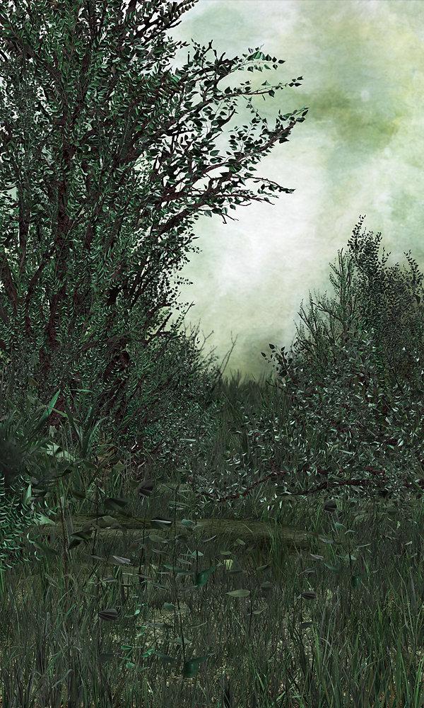 Blank-Interior-9.jpg
